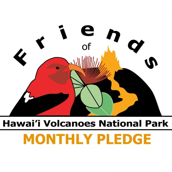 Friends logo monthly pledge