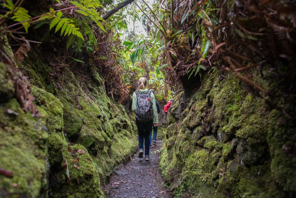 Hikers on Halemaʻumaʻu Trail - Photo by Steve Geiger
