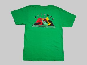 SS T-shirt Kelly Green back